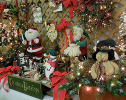 Cincinnati Christmas Tree Farm