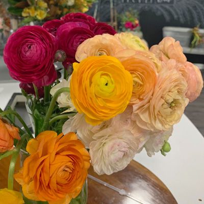KC Flower Farm Ranunculus