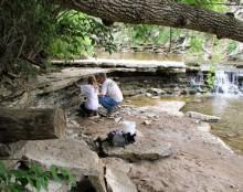 Hueston Woods State Park - Image