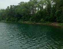 Thomas O. Marsh Park Fishing Lake and Bait House - Image